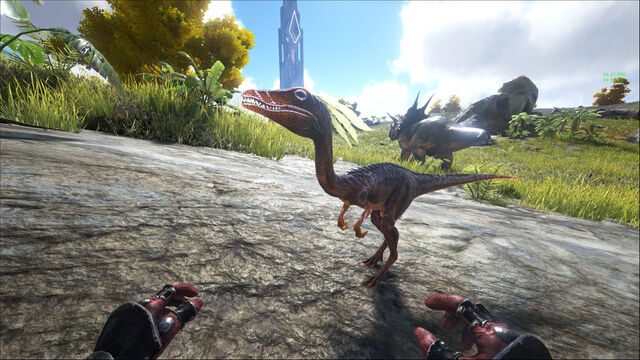 File:ARK-Compsognathus and Triceratops Screenshot 001.jpg