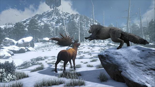 File:ARK-Direwolf and Megaloceros Screenshot 001.jpg