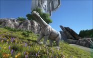 ARK-Paraceratherium Screenshot 006