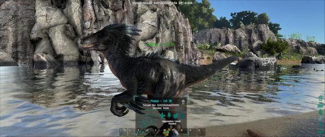File:ARK-Raptor Screenshot 007.jpg