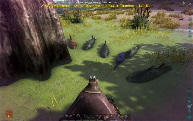 File:ARK-Coelacanth Screenshot 007.jpg