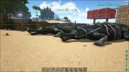 ARK-Sarcosuchus Screenshot 007