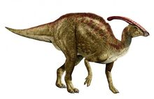 Parasaurolophus-New-692x444
