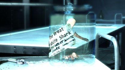 File:SharkTeeth.jpg