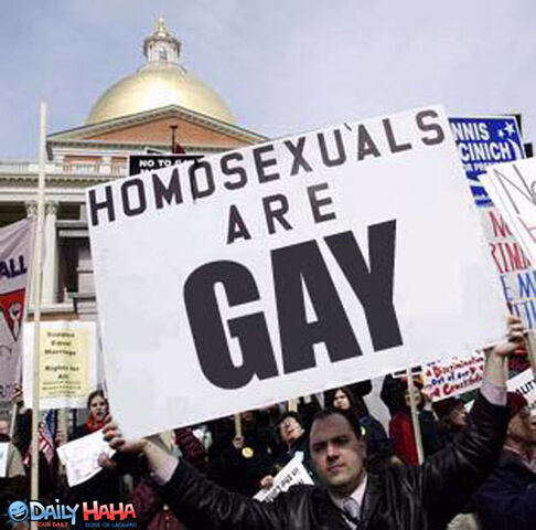 File:Homosexuals are gay.jpg