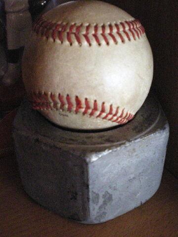 File:1187464230 2007 baseballnutb.jpg