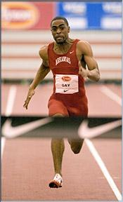 File:Player profile Tyson Gay.jpg