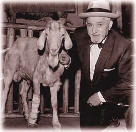 File:Murphy (Billy Goat).jpg