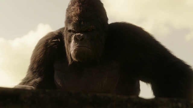 File:Grodd watching Flash vs Solovar.png