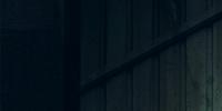 2ª Temporada (Arqueiro)