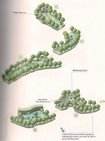 File:Cello Forest Map 2.jpg