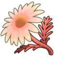 Red Chamomile (ToV).png