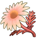 File:Red Chamomile (ToV).png
