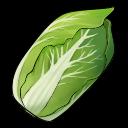 File:Napa Cabbage (ToV).png