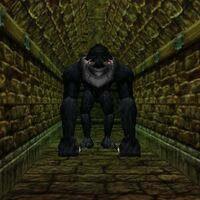 Oubliette Dungeon Live 2