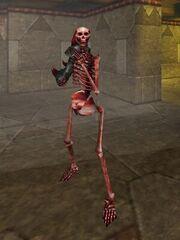 Skeletal Hero Live