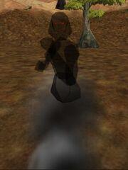 Tenebrous Shadow Live