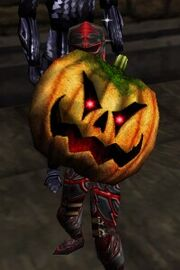 Pumpkin Shield Live