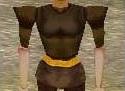 Fine Armoredillo Hide Shirt (Should the Stars Fall) Live