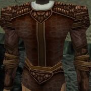 Armoredillo Hide Coat Live