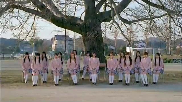 【MV】 桜の木になろう - AKB48 公式