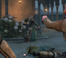 Attack on Prince Suleiman