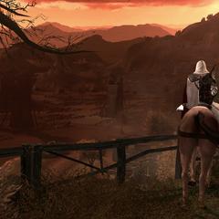 Ezio komt aan in Viana.