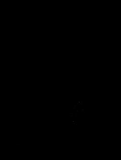 Ottoman Insignia-R.png