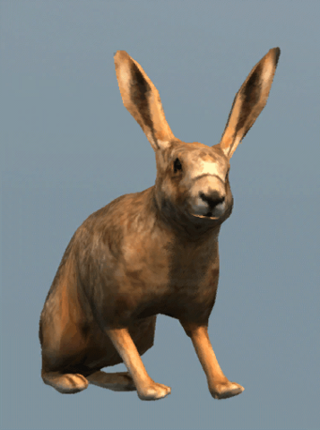 File:DB Hare.png