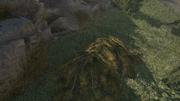 AC3 foliage pile