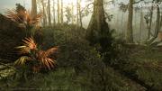 AC3L bayou screenshot 05 by desislava tanova