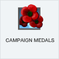 File:Campaign Medals PL.png