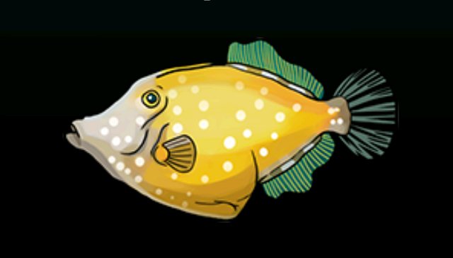File:White-SpottedFilefishACP.png