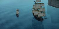 Among Pirates