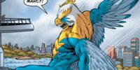 Stormhawk