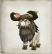 Fighting Goat