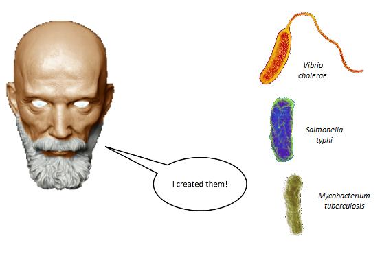 File:Bacteria.png