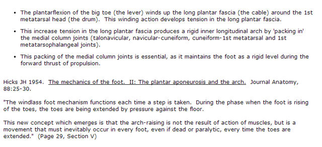 File:Foot Windlass Mechanics Explained.jpg