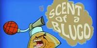 Scent of a Blugo