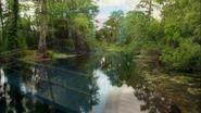 Everglades & Ally-Gators (479)