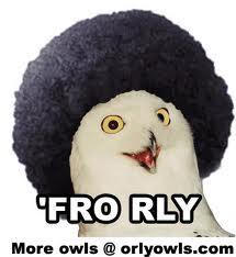 File:Fro Rly.jpeg