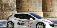 Peugeot 207 RCup