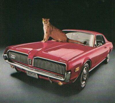 File:68 Cougar1.jpg