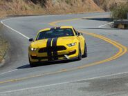 Imageshelbygt350rontheroad