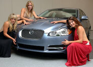 Carscoop XF CH