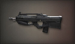 Weapon Assult FN-F2000