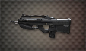 File:Weapon Assult FN-F2000.jpg