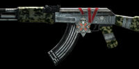 AK47, Medal of Valor