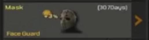 File:Face Guard Mask Slot.jpg