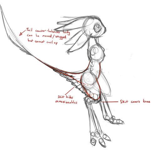 File:Skirt anatomy.jpg